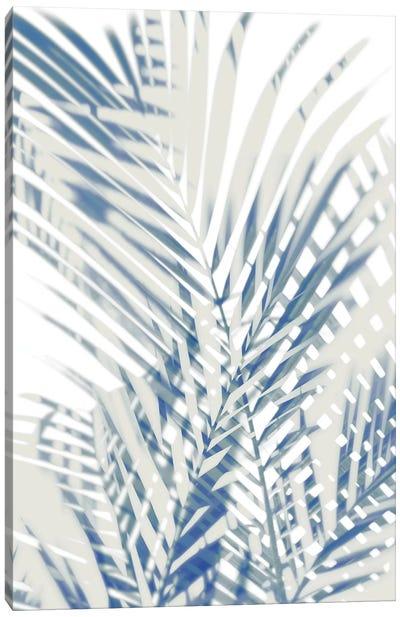 Palm Shadows  I Canvas Art Print