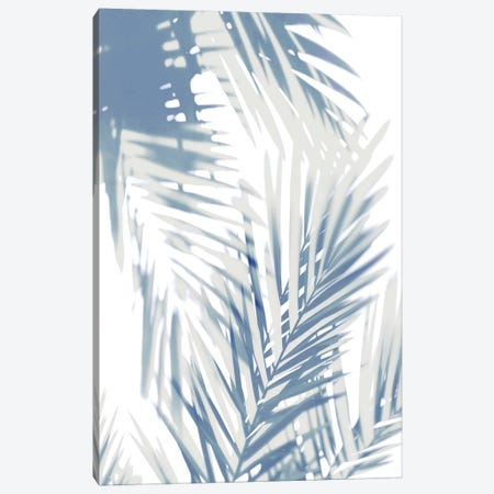 Palm Shadows  II Canvas Print #MMR58} by Melonie Miller Canvas Wall Art