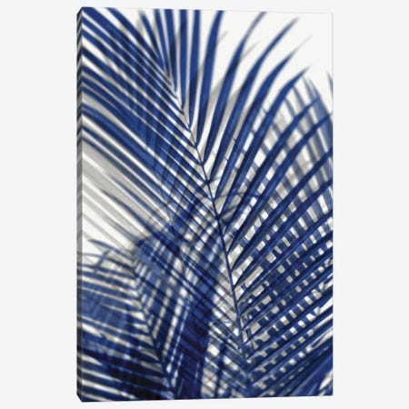 Palm Shadows Blue I Canvas Print #MMR59} by Melonie Miller Canvas Artwork