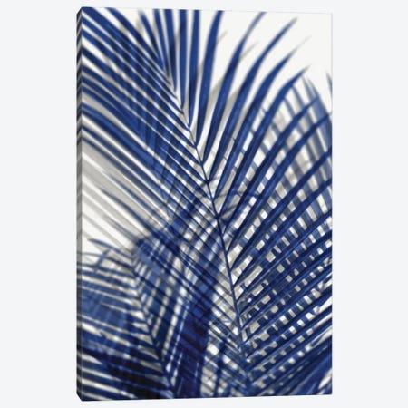 Palm Shadows Blue I 3-Piece Canvas #MMR59} by Melonie Miller Canvas Artwork