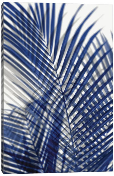 Palm Shadows Blue I Canvas Art Print