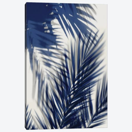 Palm Shadows Blue II Canvas Print #MMR60} by Melonie Miller Canvas Print