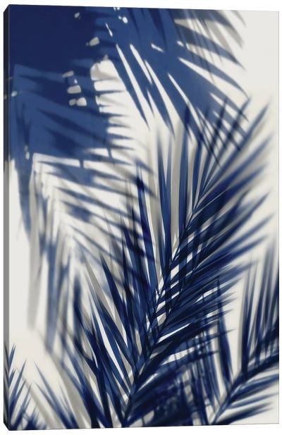 Palm Shadows Blue II Canvas Art Print