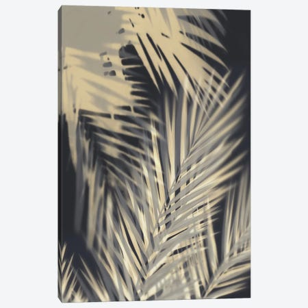 Palm Shadows Cream II Canvas Print #MMR62} by Melonie Miller Canvas Print