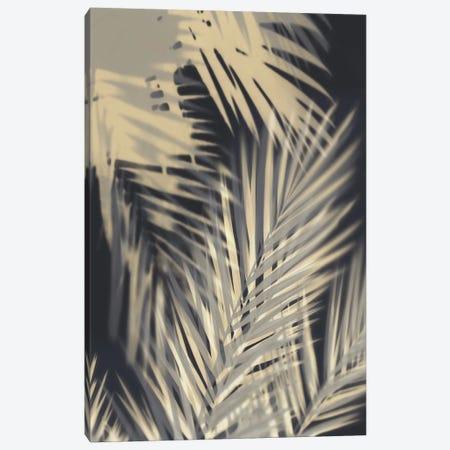 Palm Shadows Cream II Canvas Print #MMR62} by Melonie Miller Canvas Print