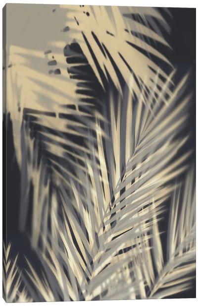 Palm Shadows Cream II Canvas Art Print