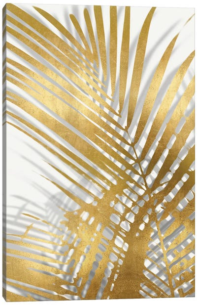 Palm Shadows Gold I Canvas Art Print