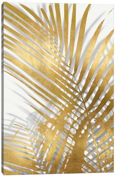 Palm Shadows Gold I Canvas Art Print