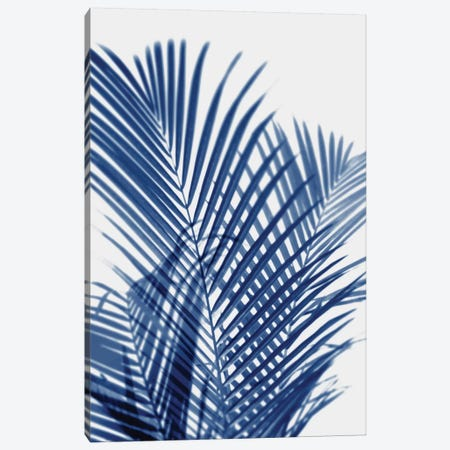Palm Shadows Indigo I Canvas Print #MMR65} by Melonie Miller Canvas Artwork