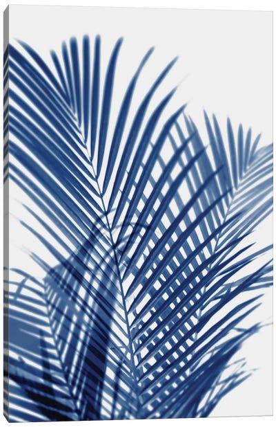 Palm Shadows Indigo I Canvas Art Print