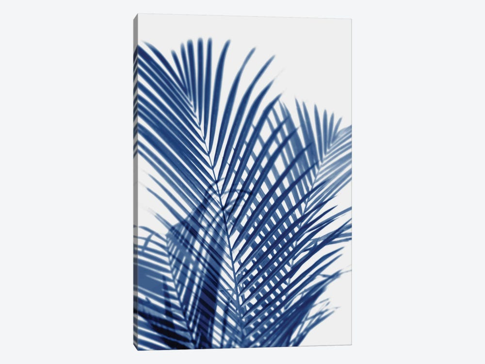 Palm Shadows Indigo I by Melonie Miller 1-piece Canvas Art Print