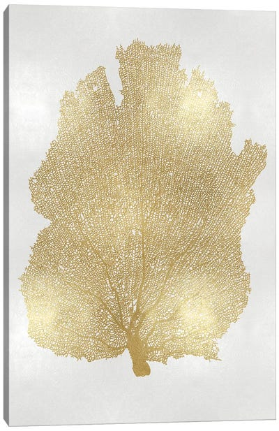 Sea Fan Gold I Canvas Art Print