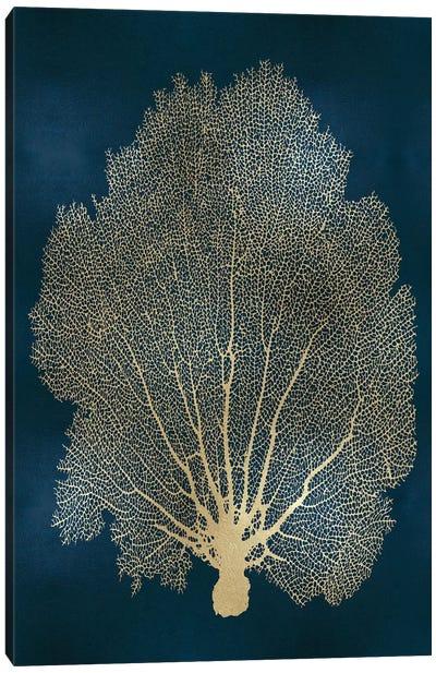 Sea Fan Gold on Teal II Canvas Art Print