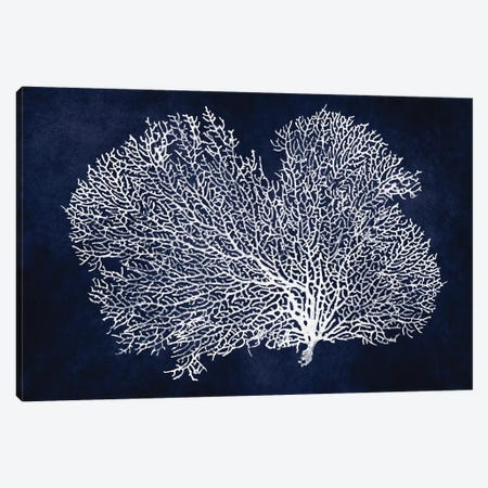Sea Fan on Indigo Blue II Canvas Print #MMR75} by Melonie Miller Canvas Print