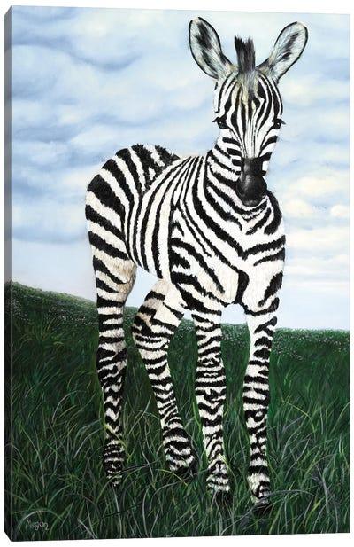 At Attention Zebra Canvas Art Print