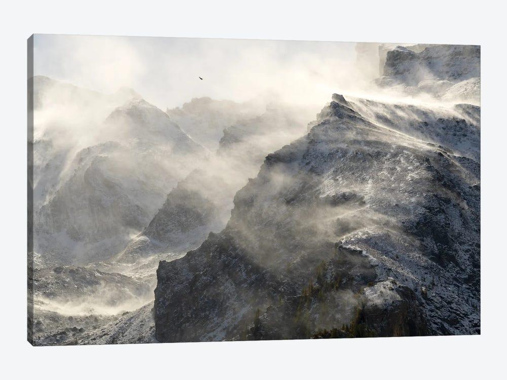 Resilience by Mauro La Malva 1-piece Art Print