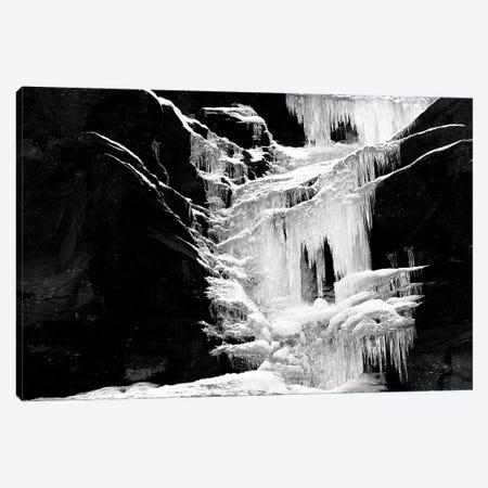 Ice Sculpture Canvas Print #MMV41} by Mauro La Malva Art Print