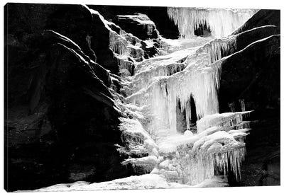 Ice Sculpture Canvas Art Print