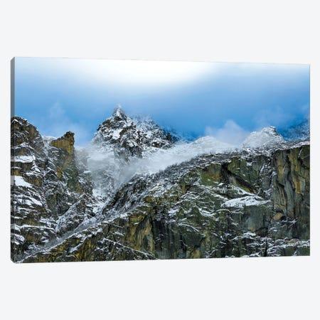 Winter Profile Canvas Print #MMV43} by Mauro La Malva Art Print
