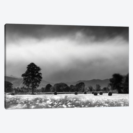 Countryside Storm Canvas Print #MMV68} by Mauro La Malva Canvas Print
