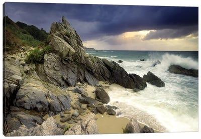 Incoming Storm Canvas Art Print