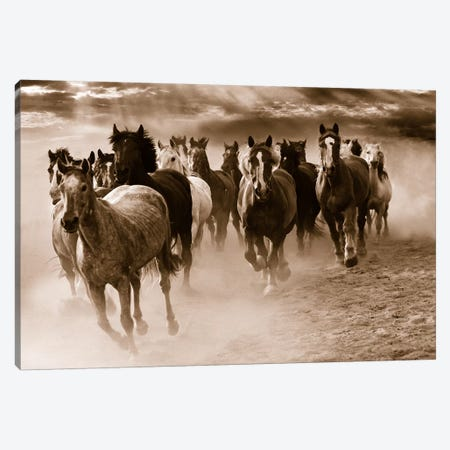 Running Horses Canvas Print #MNA31} by Monte Nagler Canvas Art Print