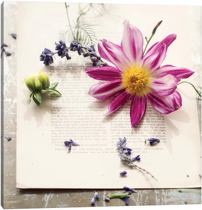 Dalia On Paper Canvas Art Print