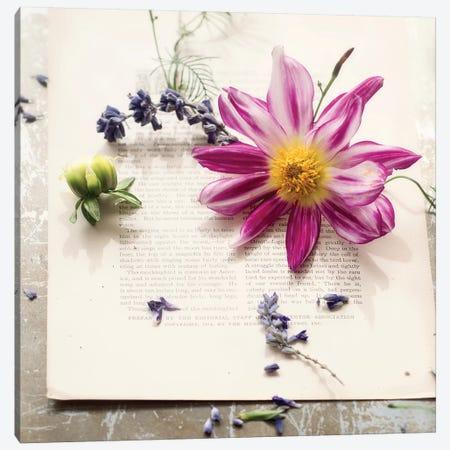 Dalia On Paper Canvas Print #MND13} by Mandy Lynne Canvas Art