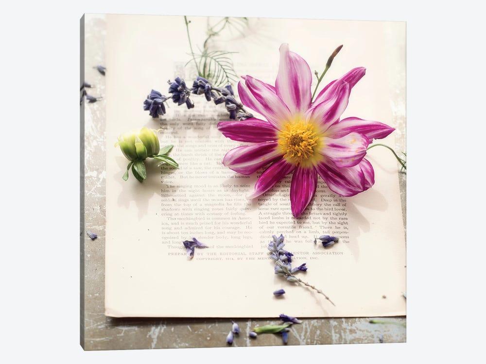 Dalia On Paper by Mandy Lynne 1-piece Canvas Print