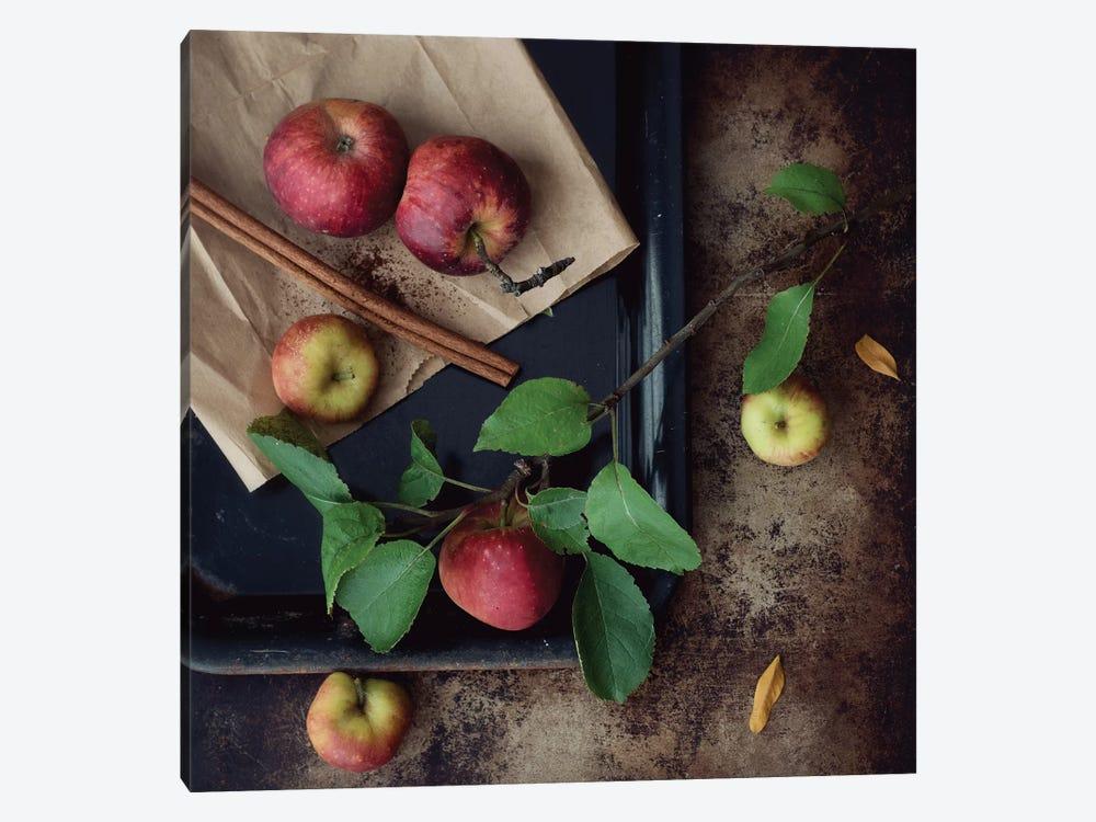 Apples by Mandy Lynne 1-piece Canvas Wall Art