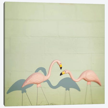 Flamingo II Canvas Print #MND23} by Mandy Lynne Art Print