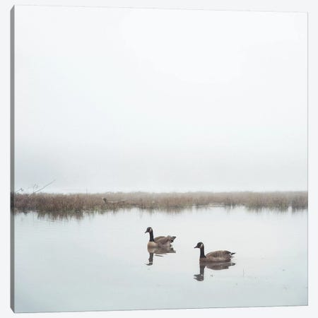 Geese On Lake Grain Canvas Print #MND29} by Mandy Lynne Art Print