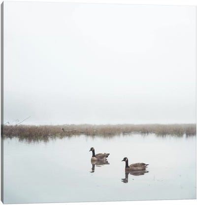 Geese On Lake Grain Canvas Art Print