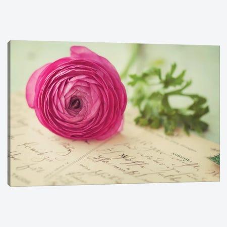 Pink Flower & Postcard Canvas Print #MND46} by Mandy Lynne Canvas Wall Art