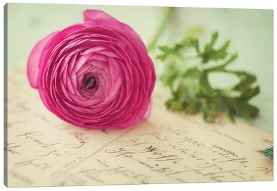 Pink Flower & Postcard Canvas Art Print
