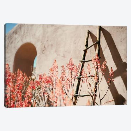 Sun And Shadows Canvas Print #MND70} by Mandy Lynne Canvas Wall Art