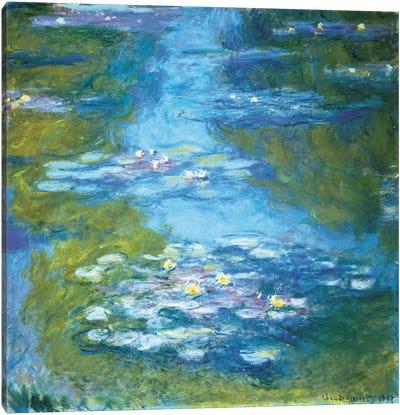 Nymphéas II Canvas Art Print