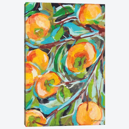 Persimmon   Canvas Print #MNG104} by Jessica Mingo Art Print