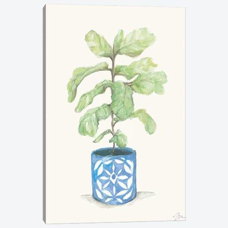 Fiddle Leaf Plant Canvas Print #MNG116} by Jessica Mingo Canvas Art