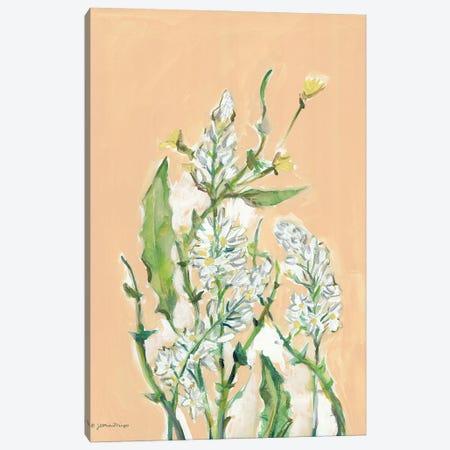 Spring Flora Canvas Print #MNG130} by Jessica Mingo Canvas Art Print
