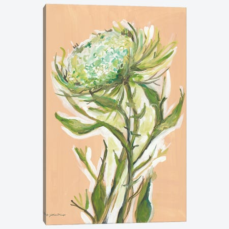 Spring Greens Canvas Print #MNG131} by Jessica Mingo Canvas Print