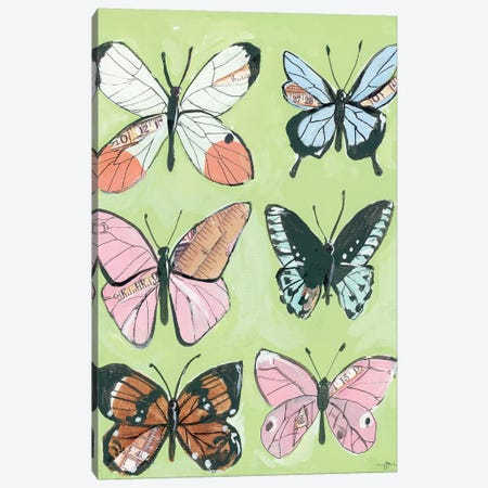 Butterfly Beauty Canvas Print #MNG1} by Jessica Mingo Canvas Art Print