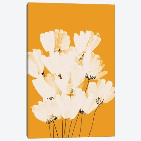White Flowers On Gold Canvas Print #MNH135} by Morgan Harper Nichols Canvas Wall Art