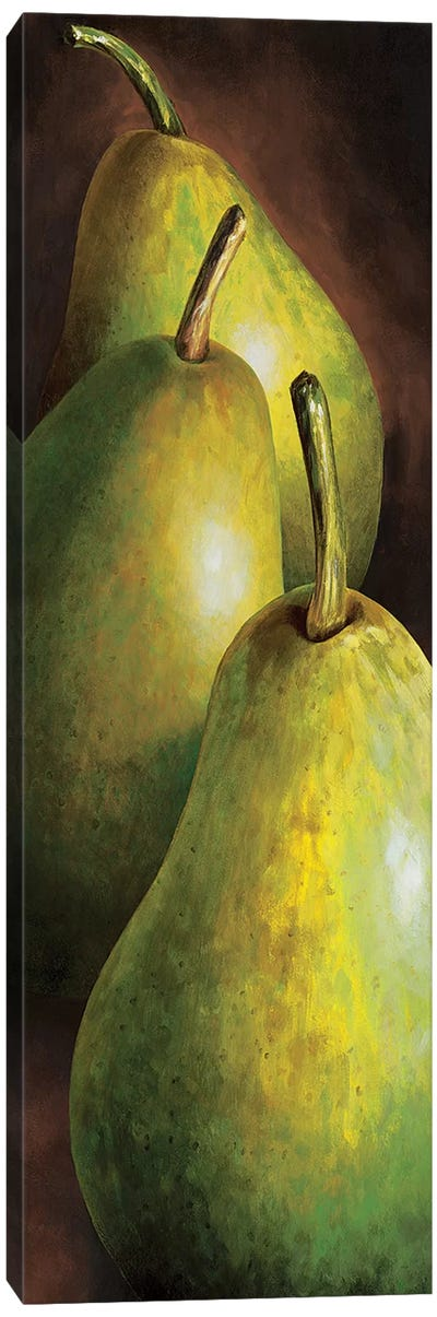 Pere Canvas Art Print