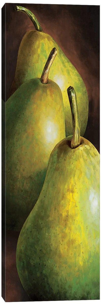 Pere Canvas Art Print