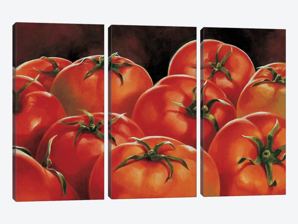 Pomodori by Stefania Mottinelli 3-piece Canvas Wall Art