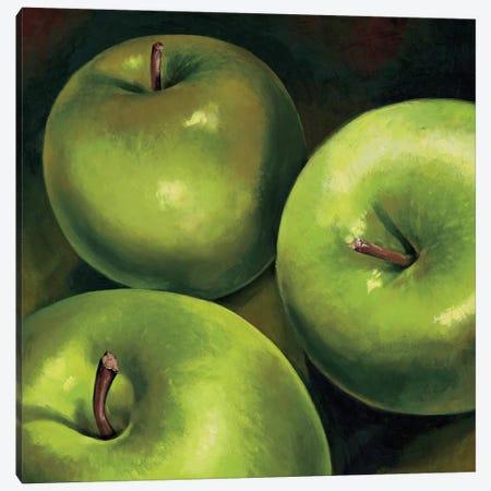 Mele verdi Canvas Print #MNL7} by Stefania Mottinelli Canvas Art Print