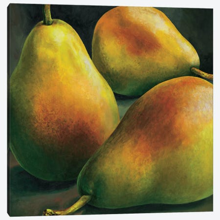 Tre pere Canvas Print #MNL8} by Stefania Mottinelli Canvas Art