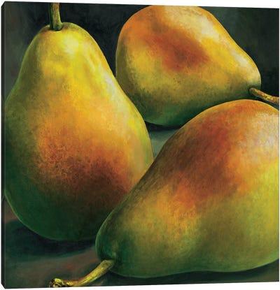 Tre pere Canvas Art Print