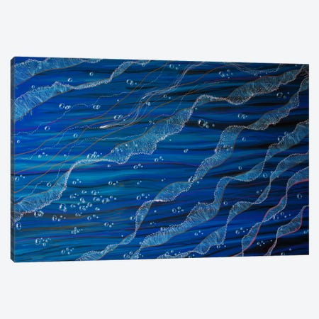 Jelly Tentacles Canvas Print #MNM17} by Martin Nasim Canvas Art